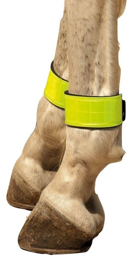 High Visibility Leg Bands